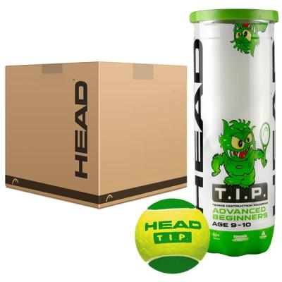 HEAD - TIP Green (Stage 1) Bax 72 Buc. Mingi Tenis Copii 8-10 Ani